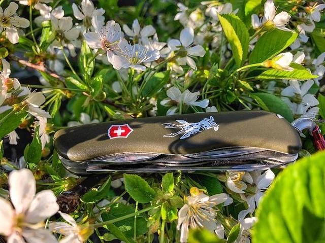 Nvaja suiza en color verde sobre fondo de flores blancas